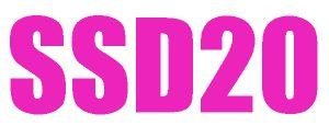 SSD20 will be held in Pisa, Italy
